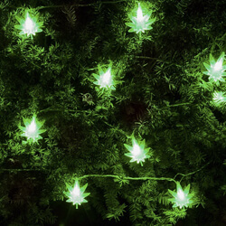 weedleaflights - Christmas Lights Amazon