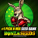 Bonza Seeds Discount Codes