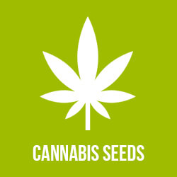 Discount cannabis seeds coupon code
