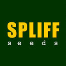 Spliff Seeds Discount Codes
