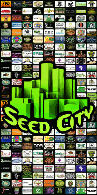 Shop Over 4,500 Cannabis Strains at Seed City