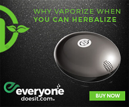 Get the Herbalizer Vaporizer at EveryoneDoesIt